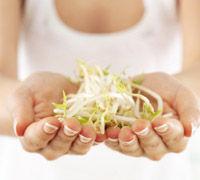 Nutrición y Salud. Alimentos de la A a la Z. Soja, la gran aliada de la mujer
