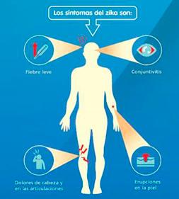 imágen síntomas del virus del zika