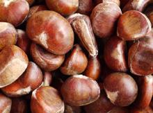 Nutrición y Salud, Alimentos de la A a la Z, Castaña, fuente de nutrientes