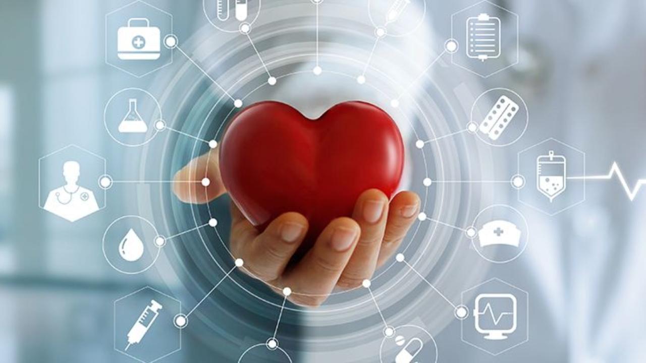 como bajar la grasa del corazon