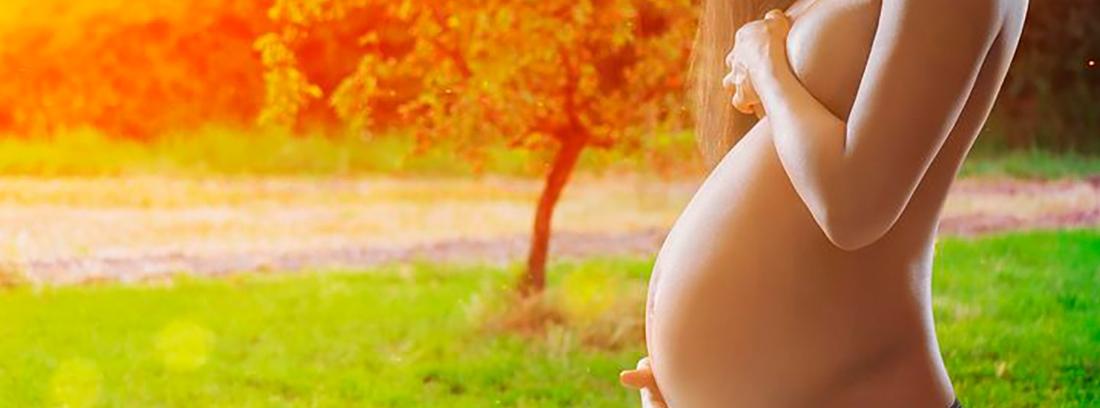 Definición de embarazo