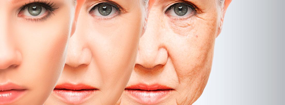 Qué es el envejecimiento? -canalSALUD