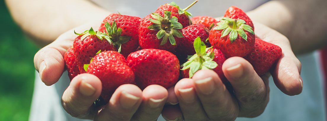 manos sujetando un puñado de fresas