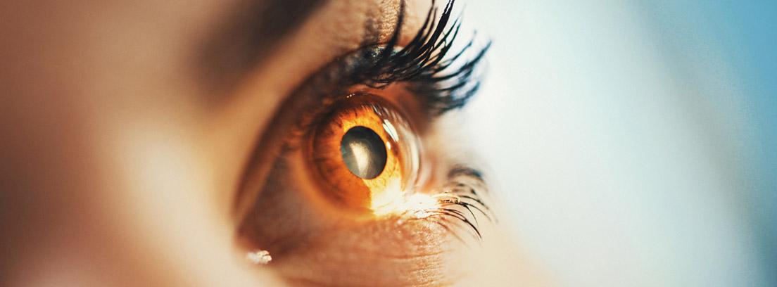 ojo de mujer angiografía de retina
