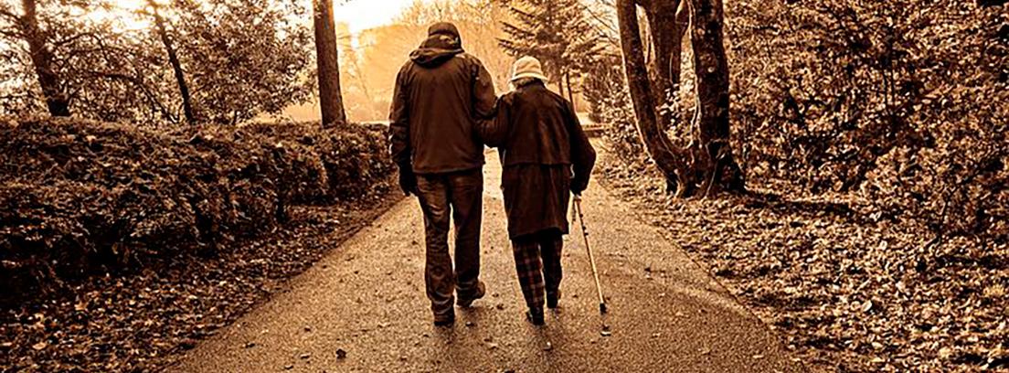 Mayores - Teorías del envejecimiento