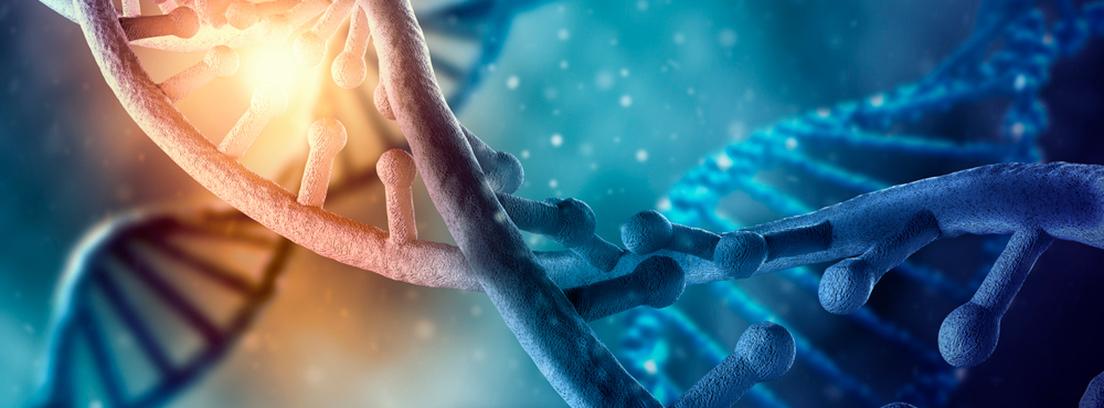 test-genetico-cancer-entr