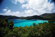 Bienestar. Viajes tropicales: Consejos de salud