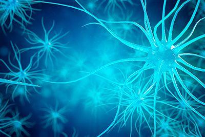 células de neuronas ELA