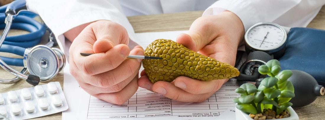 medico señalando una zona del pancreas