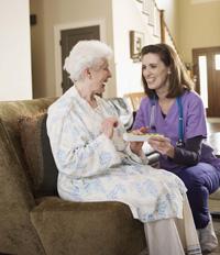 Salud Mayores. Los servicios sociales para personas mayores. Actuación en el domicilio y en la comunidad