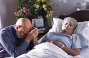 Salud Mayores. Cuidados al final de la vida de los mayores. Problemas éticos y legales