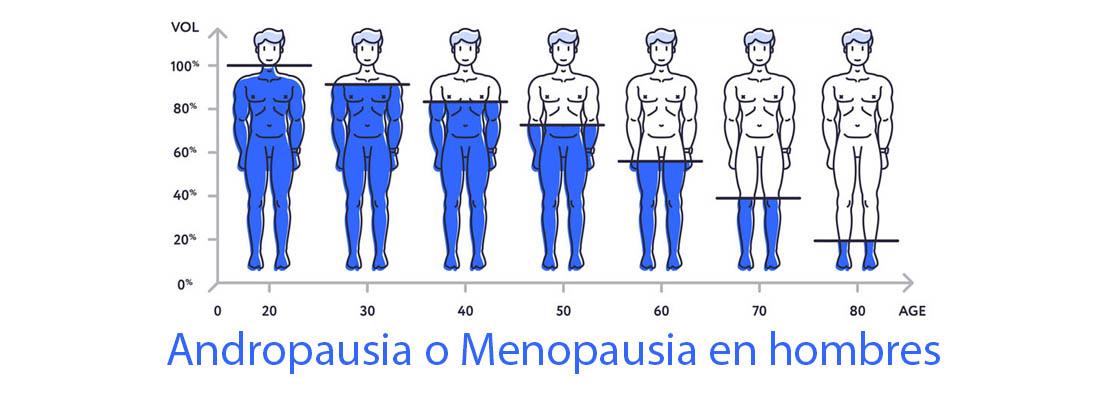 escala descenso testosterona hombres