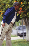 Salud Mayores. Síndromes geriátricos. Alteraciones sensoriales. Alteraciones del gusto y el olfato