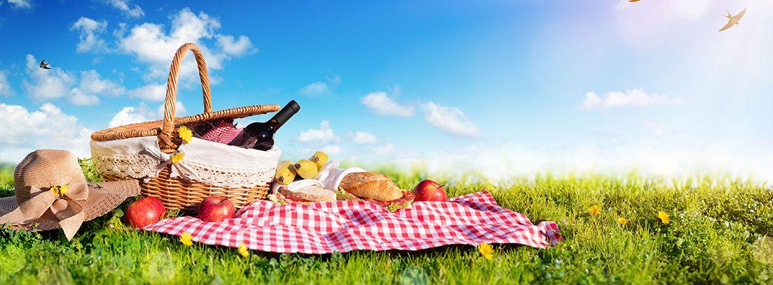 cesta con alimentos para ir de picnic