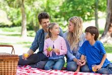 nutrición y salud-picnic-familia