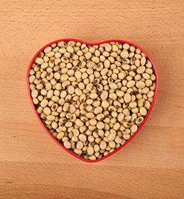 corazón de soja