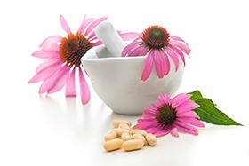 plantas aliadas a los resfriados