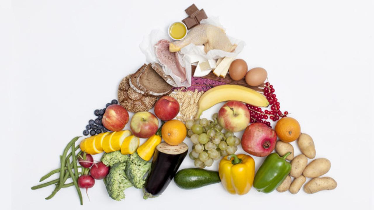cual es el contenido de los alimentos