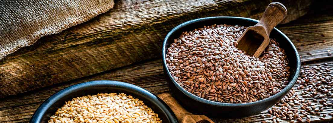 Zaragatona: semillas