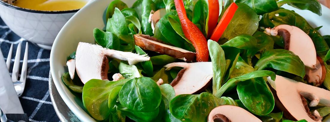 diferentes platos de comida saludable