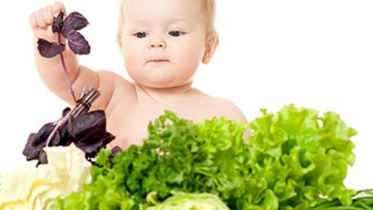 comida saludable para niños y adultos