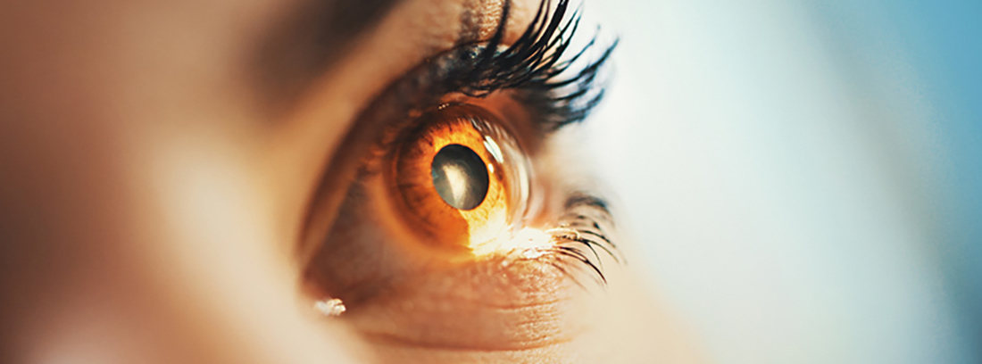 ojo de mujer color miel