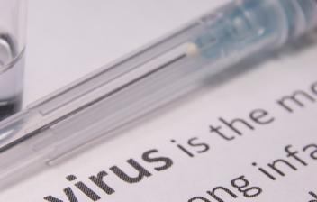 primer plano de un escrito sobre virus
