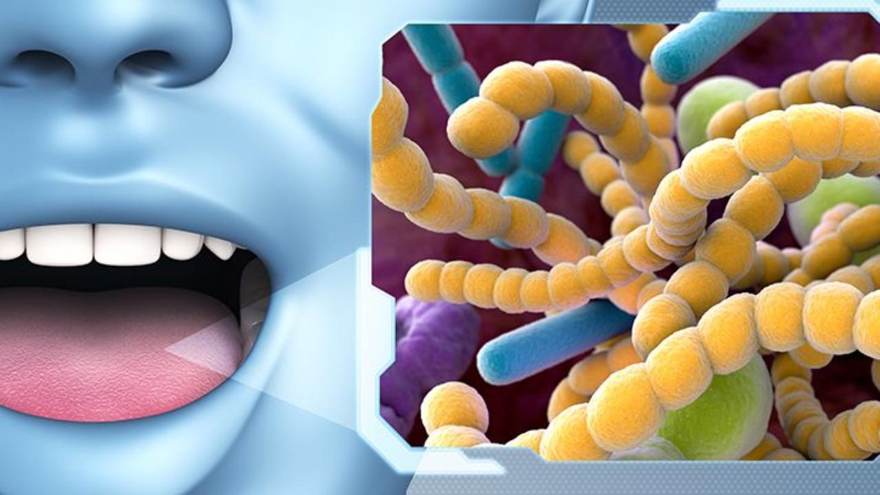 enfermedades virales orales