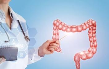 médico señalando un trozo de intestino