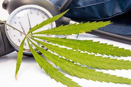 hoja de cannabis y tensiometro