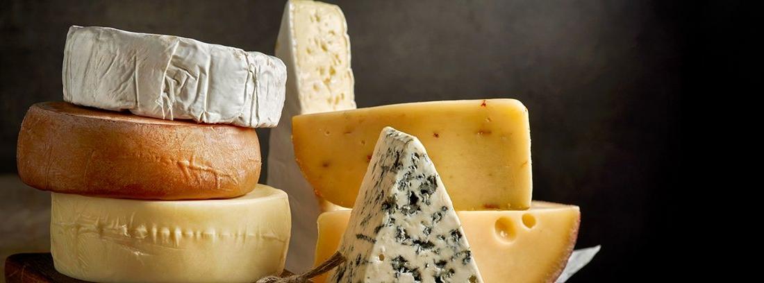 diferentes tipos de quesos