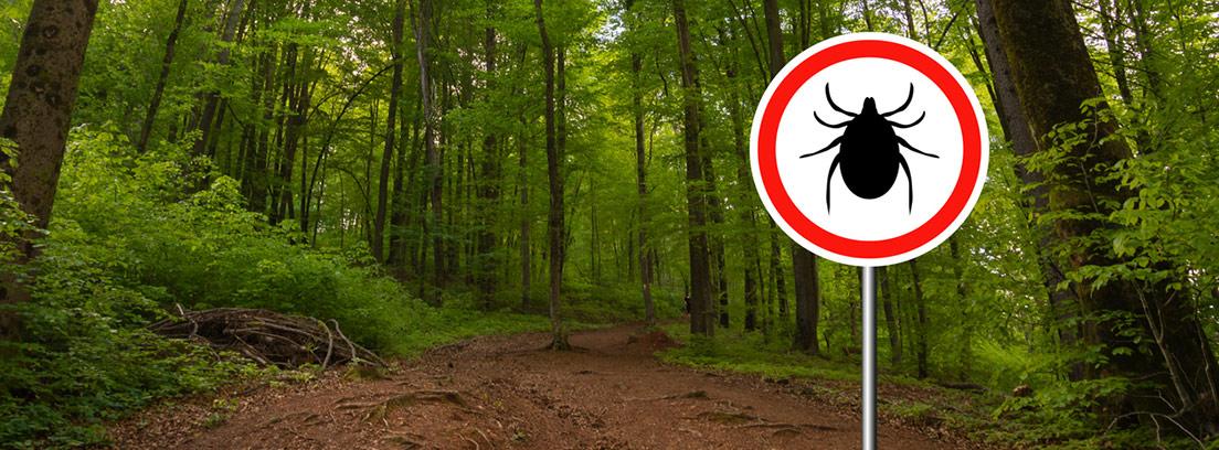 bosque con una señal de advertencia por garrapatas