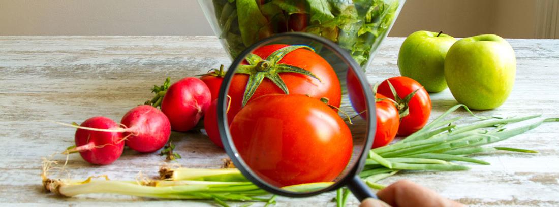 manzanas, rábanitos, ajetes y una lupa encima de unos tomates