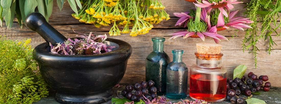 diferentes plantas medicinales, mortero negro y frasquitos medicinales