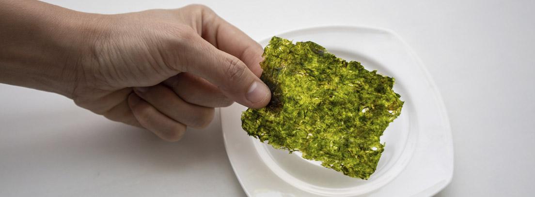 porcion de alga nori