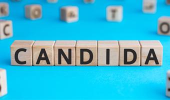 juego de letras con la palabra candida