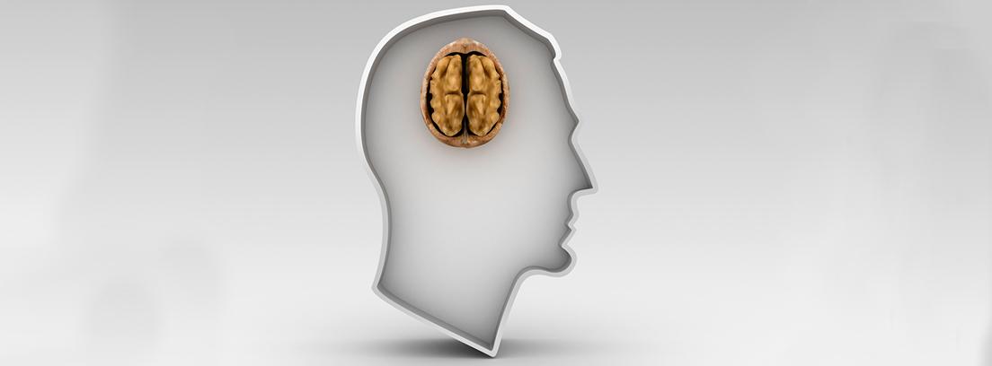 silueta de cabeza de hombre con una nuez en el cerebro
