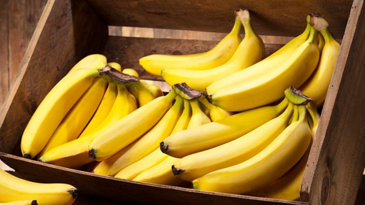 Qué beneficios nutricionales tiene el plátano? -canalSALUD
