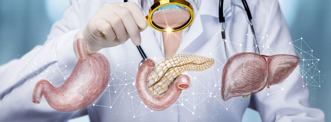 Transaminasas altas: problemas de páncreas e hígado