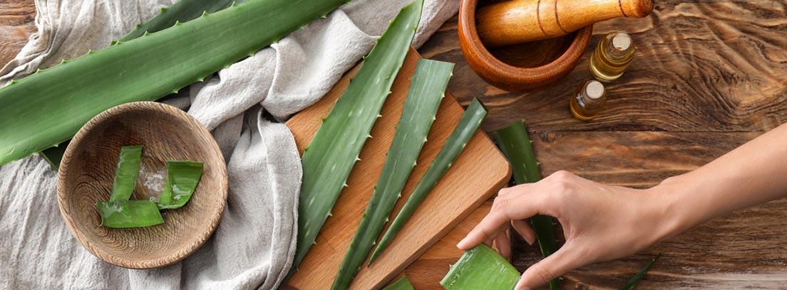 4 Remedios caseros con plantas para tu bienestar : gel de aloe vera