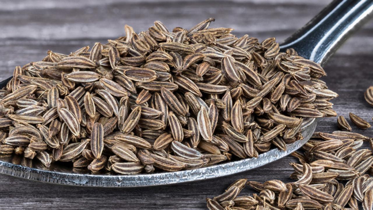 Semillas de alcaravea: beneficios -canalSALUD