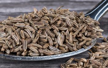 Alcaravea, una semilla digestiva: cuchara de madera con semillas de alcaravea
