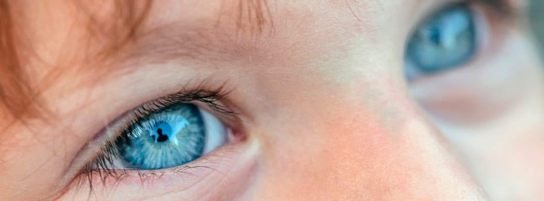 ¿De qué depende el color de los ojos: niño con los ojos azules