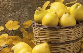 ¿Qué beneficios tiene el membrillo para la salud? cesta de mimbre llena de membrillos