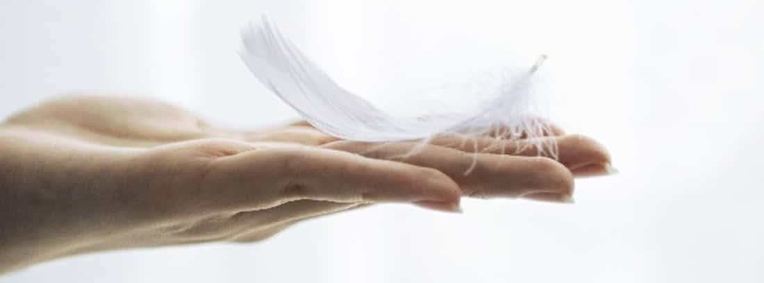 Persona altamente sensible: pluma encima de unas manos