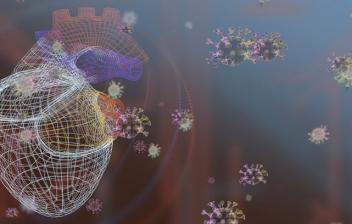 ¿Cómo afecta el Covid-19 al corazón?: corazón y virus del covid