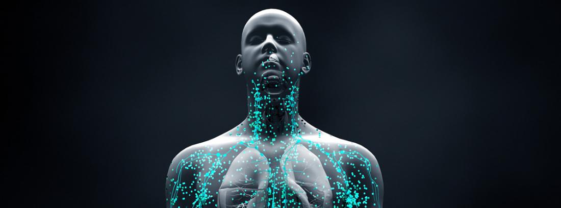 ¿Que son las enfermedades autoinmune? sistema inmunitario en el hombre