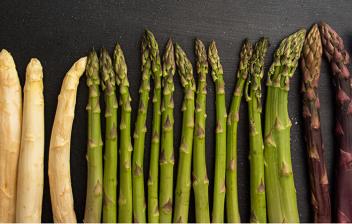 Espárragos, beneficios y composiciónj nutricional: variedad de esparragos, verdes, blancos y negros