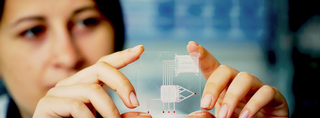 Biochips, implantes de chip en el cuerpo: especialista con un chip en las manos