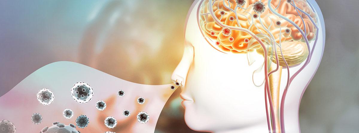 ¡Qué indica el color del moco?: silueta de cabeza con infección en mucosas